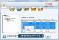 Digital Camera Data Recovery screenshot