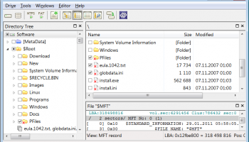 DMDE - DM Disk Editor and Data Recovery screenshot