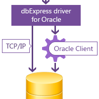 dbExpress driver for Oracle screenshot