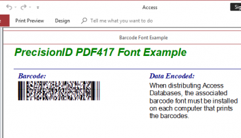 PrecisionID PDF417 Barcode Fonts screenshot