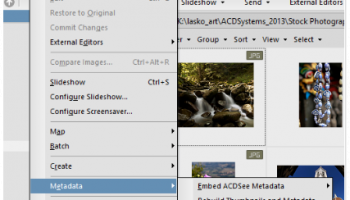 ACDSee Photo Manager screenshot